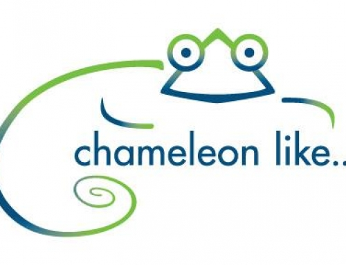 Chameleon like, Inc. acquires The Platform Group Gallery