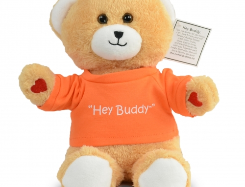 IMAGEN Brands and Hey Buddy™ Bear Donates to Charity